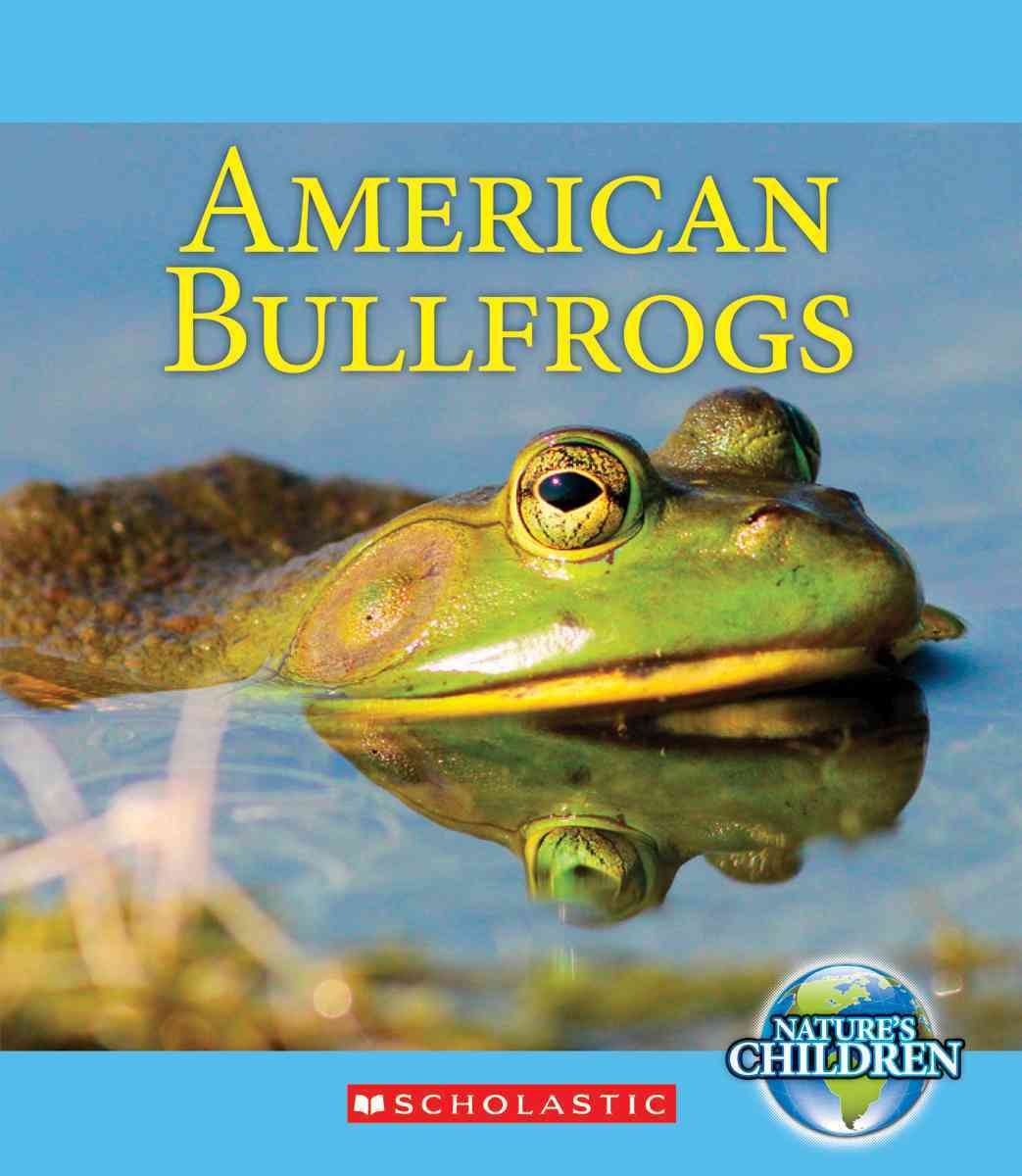 American Bullfrogs By Marsico, Katie